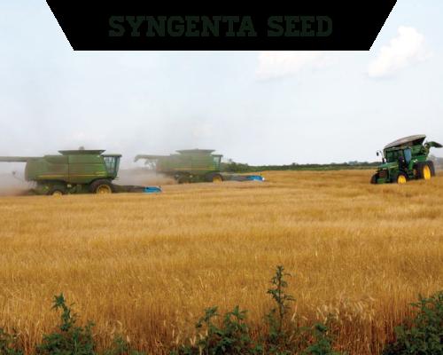 Syngenta Seed Advisor